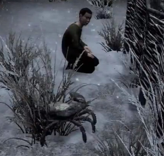 Samuel and Pet Mudcrab playing in the snow in Skyrim Hearthfire