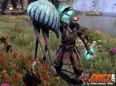 ESO Morrowind: Warden - Orcz com, The Video Games Wiki