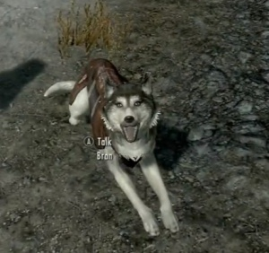 Follower as well as adopted as a pet by your child in skyrim