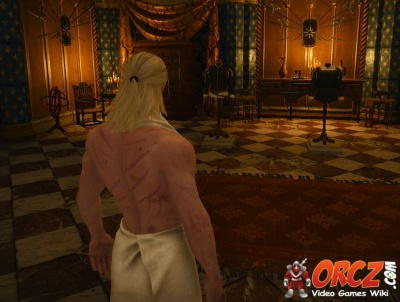 Witcher 3: Get dressed and talk to chamberlain - Orcz com