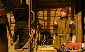 Witcher 3: In Beast's Clothing - Orcz com, The Video Games Wiki