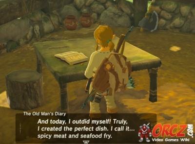 Breath Of The Wild The Old Mans Diary Orczcom The Video Games Wiki