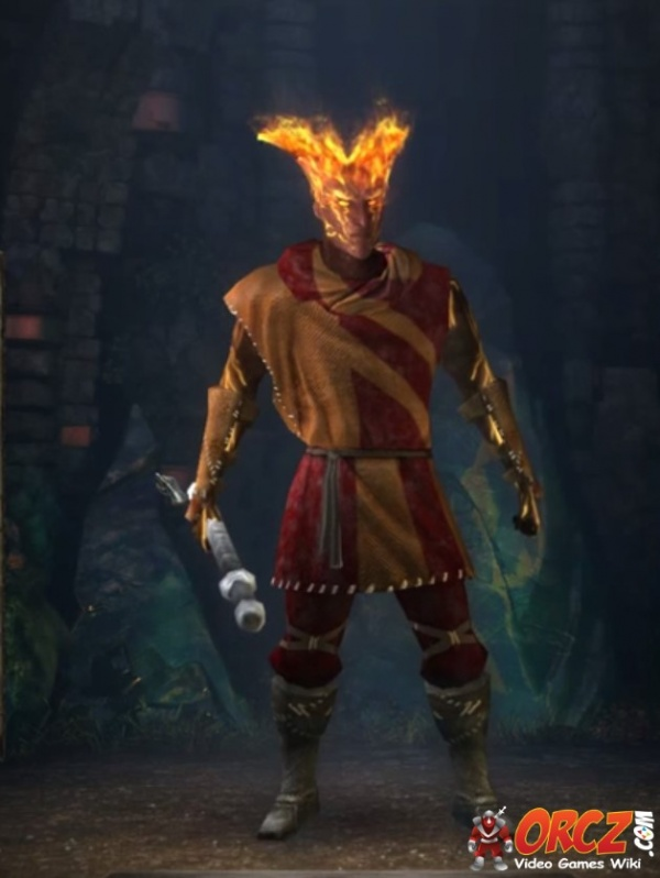 Pillars of Eternity: Wizard - Orcz.com, The Video Games Wiki