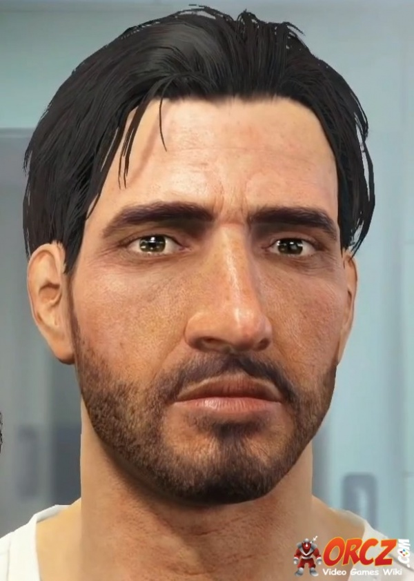 Misc hairstyle fallout 4 nexus