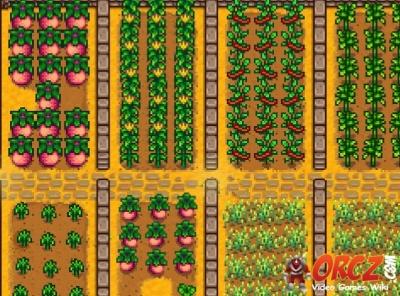 stardew valley crop farming orczcom the video games wiki