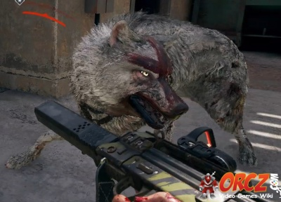 Far Cry 5 Judge Wolf Orcz Com The Video Games Wiki