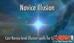 Novice Illusion